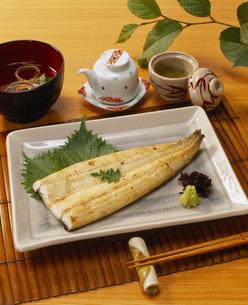 鰻の白焼き 関東風の写真素材 [FYI03941894]