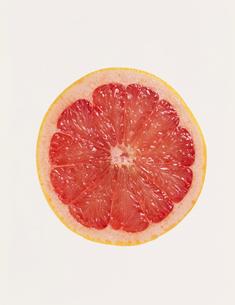 ルビーグレープフルーツの写真素材 [FYI03942157]