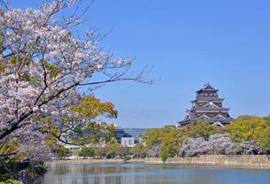 広島城の天守閣の写真素材 [FYI03942330]