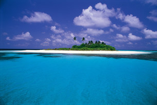 島とヤシの木の写真素材 [FYI03942495]