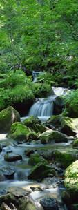 渓流の写真素材 [FYI03943270]