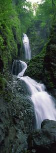 滝の写真素材 [FYI03943271]
