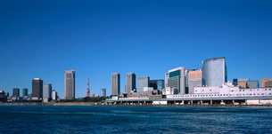 隅田川より望む築地市場とシオサイトの写真素材 [FYI03943484]
