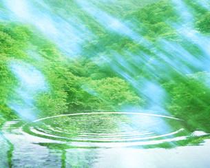 水面に映る緑の写真素材 [FYI03943497]