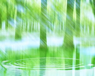 波紋と森の写真素材 [FYI03943518]