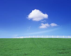 草原の白い柵の写真素材 [FYI03943595]