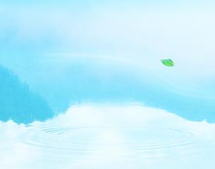 葉と波紋の写真素材 [FYI03943610]
