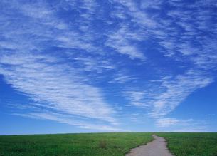 草原の小道の写真素材 [FYI03943737]