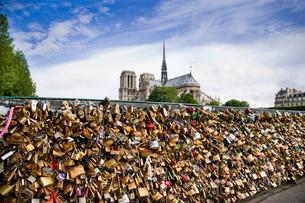 ノートルダム大聖堂と橋にかけられた南京錠の写真素材 [FYI03943773]