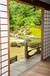 青蓮院相阿弥の庭の写真素材 [FYI03943856]