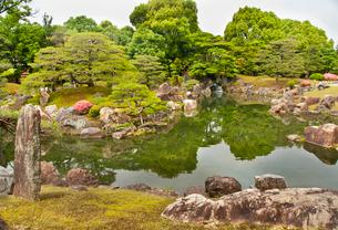 つつじ咲く二条城二の丸庭園の写真素材 [FYI03943887]