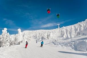 樹氷原コースのスキーヤーの写真素材 [FYI03943948]