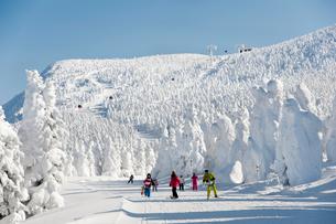 樹氷原コースのスキーヤーの写真素材 [FYI03943949]