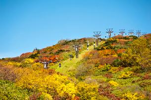 秋の蔵王刈田リフトの写真素材 [FYI03943965]