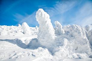 蔵王の樹氷の写真素材 [FYI03943981]