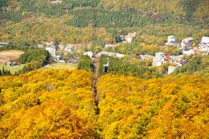 秋の蔵王ロープウエー山麓線の写真素材 [FYI03944003]