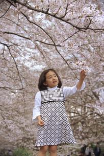 子供の写真素材 [FYI03944588]