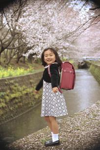 ランドセルを背負った子供の写真素材 [FYI03944589]