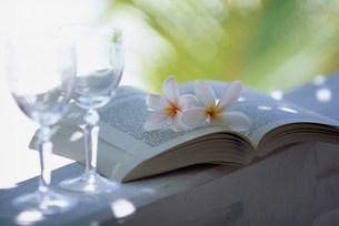 本と花の写真素材 [FYI03944834]