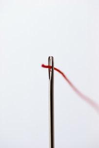 針と糸の写真素材 [FYI03944846]