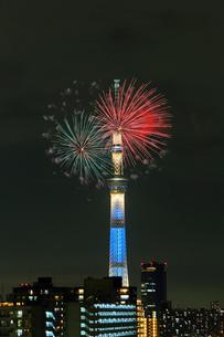 江東区民まつり亀戸地区祭りの花火とスカイツリーの写真素材 [FYI03944930]