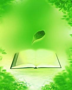 新緑イメージ  葉と本のイラスト素材 [FYI03944958]