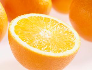 オレンジの写真素材 [FYI03944968]