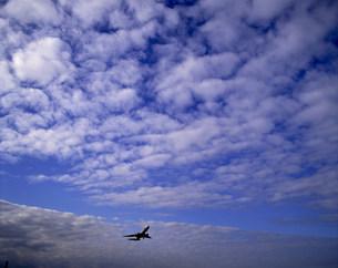 ジェット機の写真素材 [FYI03945022]