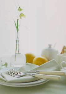 バイモユリと食卓の写真素材 [FYI03945181]