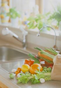 買物袋に入った野菜の写真素材 [FYI03945191]