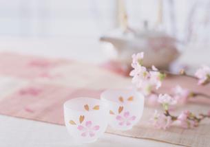 桜柄のグラスと彼岸桜の写真素材 [FYI03945203]