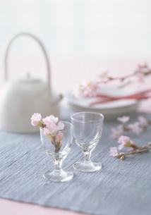 グラスに入った彼岸桜の花の写真素材 [FYI03945211]