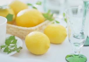 レモンと野茨の写真素材 [FYI03945221]