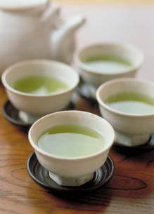 緑茶の写真素材 [FYI03945306]