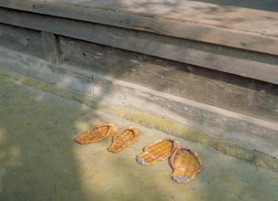 草履と縁側の写真素材 [FYI03945349]