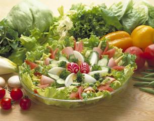 野菜サラダの写真素材 [FYI03945937]