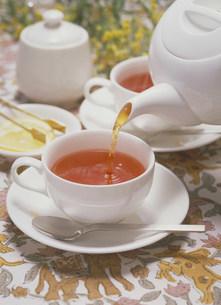 紅茶の写真素材 [FYI03946201]