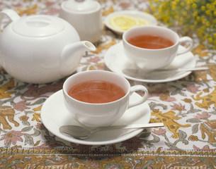 紅茶の写真素材 [FYI03946203]