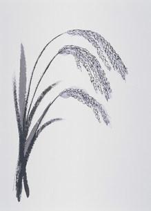 イラスト  稲のイラスト素材 [FYI03946577]