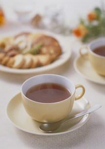 紅茶の写真素材 [FYI03946940]