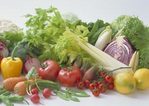野菜集合の写真素材 [FYI03946978]