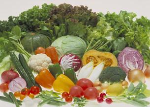 野菜集合の写真素材 [FYI03946980]