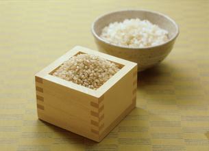 発芽玄米の写真素材 [FYI03947287]