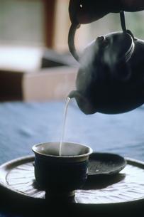 ほうじ茶の写真素材 [FYI03947503]