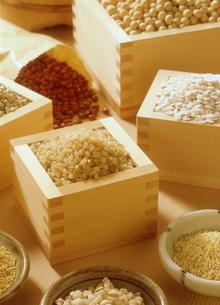 雑穀の集合の写真素材 [FYI03947551]