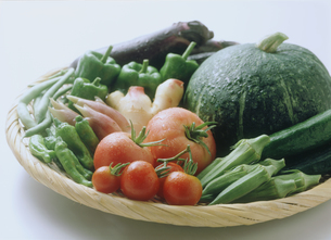 夏野菜の集合の写真素材 [FYI03947559]