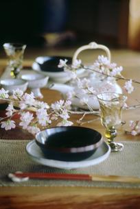 春のテーブルセットの写真素材 [FYI03947585]