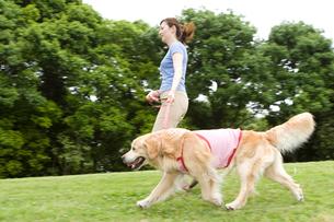 公園での若い女性と愛犬の写真素材 [FYI03947902]