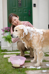 愛犬を洗う女性の写真素材 [FYI03947904]