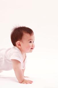 ハイハイする赤ちゃんの写真素材 [FYI03947909]